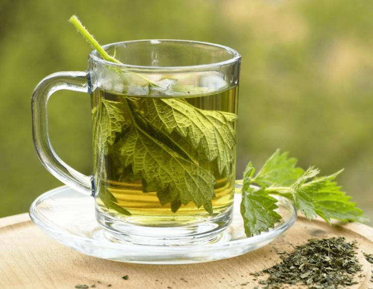 herbatka-z-pokrzywy-1